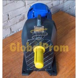 Мотор-редуктори соосно-циліндричні 1МЦ2С-100