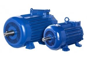 Популярные варианты исполнения крановых электродвигателей